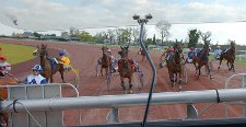 Photo Hippodrome d'Angers