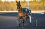 Finale du Grand National du Trot Paris-Turf 2017